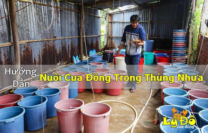 huong-dan-cach-nuoi-cua-dong-trong-thung-nhua
